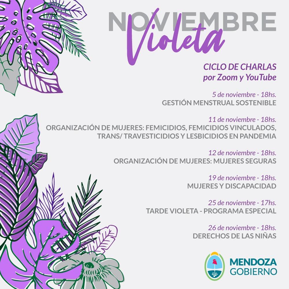 Comienza Noviembre Violeta
